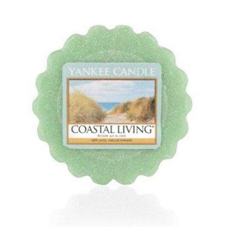 wosk od Yankee Candle, zielona w szklanym słoiku o zapachu coastal living. Drzewa, las,trawa, cytrusy, sól morska, piżmo, kwiaty morskie, drzewa, spacer po plaży, plaża, fale, odpoczynek, relaks, łazienka, toaleta, zapach do łazienki,, drobiazg, upominek